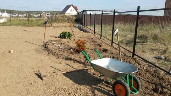 výsadba zeleně