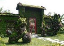 Китайский чудо-сад