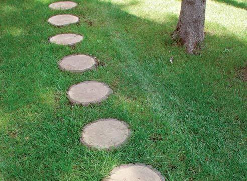 Vrt pot iz lesa, a presekov dnevniki