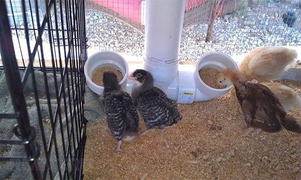 Устройство за пилета PVC тръби