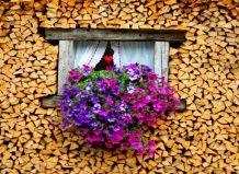 Creative woodpile