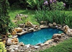 Креативный пруд из старой ванны и покрышек