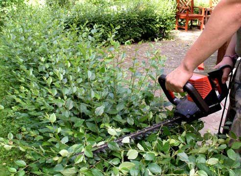 Садовые ножницы-кусторезы