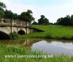 Vrt Tema: angleški krajina (pokrajina) slog