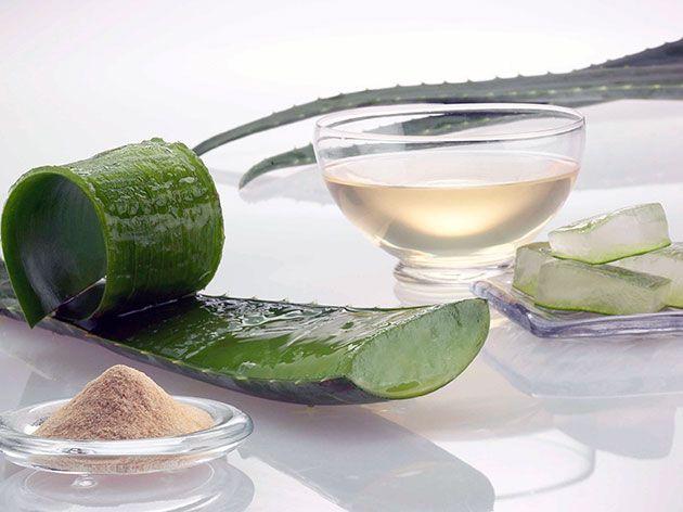 suc de aloe