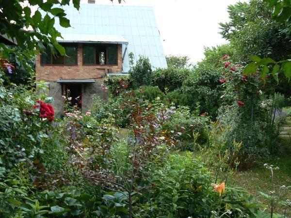 Vezi casei din grădină