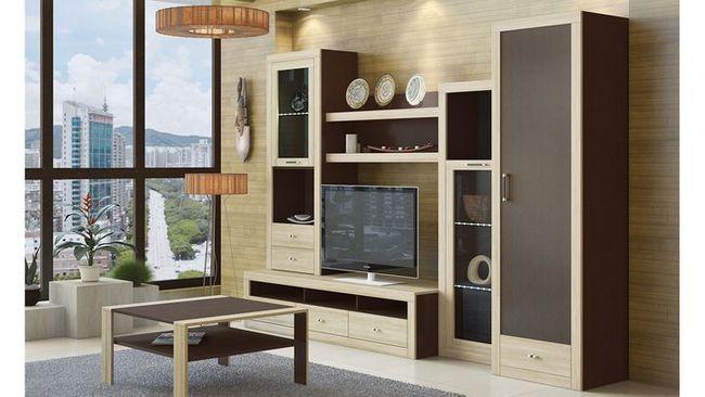 modularno pohištvo za dnevno sobo Foto 14