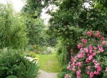 Мужские и женские сады: сад глазами психолога