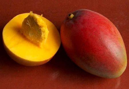 Не знаете, как вырастить манго дома из косточки? Это предельно просто!