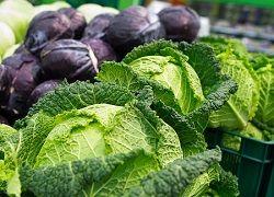 Незаменимая польза капусты: что установили ученые?
