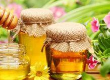 О пользе меда и пчел в вашем саду