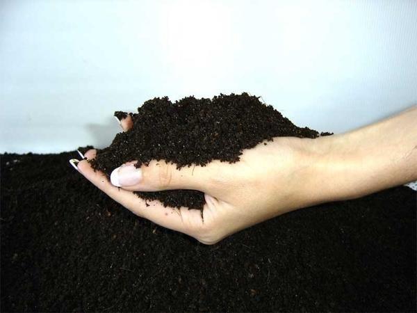 Плодородная почва - фото с сайта greenrest.ru