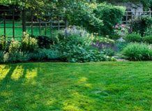Основы органической лужайки