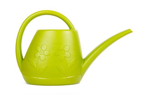 В домашних условиях овощные культуры поливают, как правило, из маленьких леек с длинными носиками