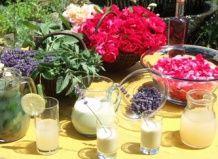 Освежающая природа – напитки из садовых и луговых трав