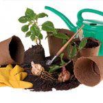 Presajanju rastlin. 1. del
