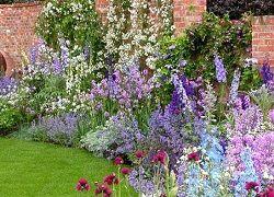 Необычная клумба из многолетников: подбор цветов
