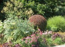 Garden načrt oblikovanje prihodnje leto