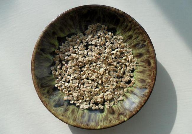 Odstrel in sortiranje paradižnikovih semen