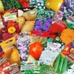Покупка семян цветов