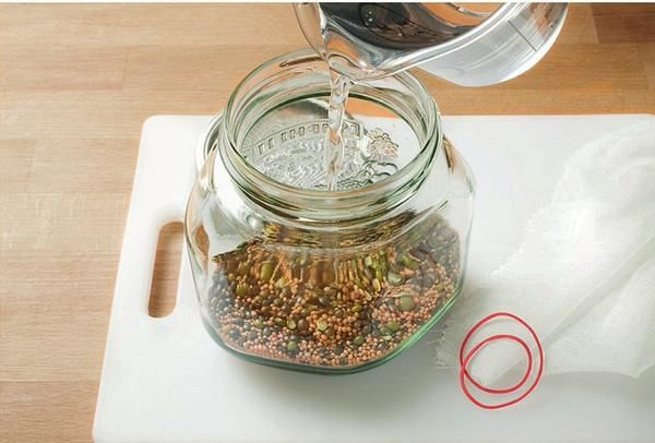 Količina: 70 g mešanice semen, danih v širokem stekleni kozarec in pokrijemo s hladno vodo.