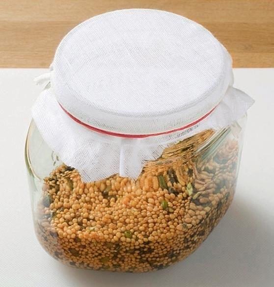 Zaprite kozarec v času kalitve tanko krpo. Tkanina varno lekarna radirka.