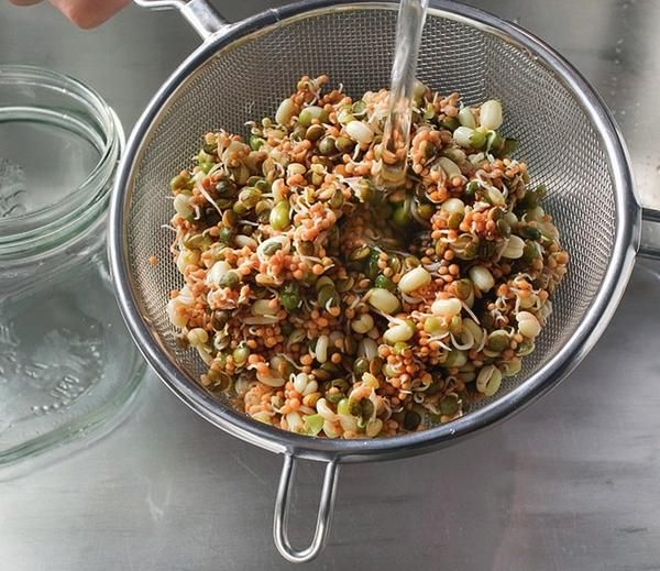 Gotov semena krat v sito in ponovno sperite s hladno vodo.