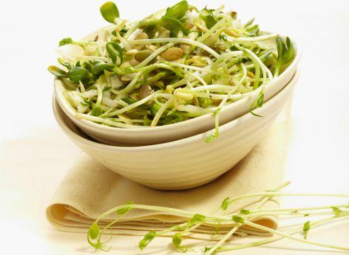 prorostki- zelje solata s kalčki