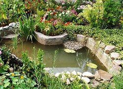 Пруд на садовом участке своими руками из формы или пленки