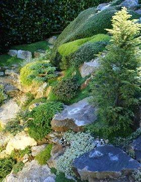 Растения для альпийской горки &amp-ndash- тонкости выбора