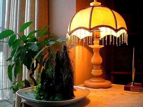 Растения в доме - приятный декор интерьера