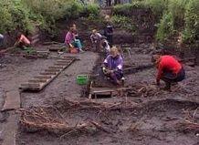 Ruski arheologi so odkrili rastlin neznana znanosti v kulturnih plasteh Veliki Novgorod
