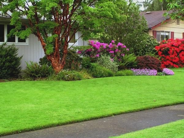 Сад с рулонным газоном