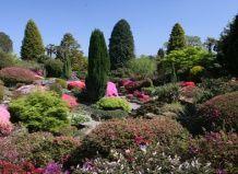 Сад леонардсли