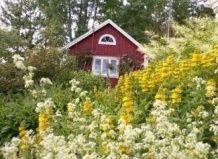 Vrt v švedskem slogu