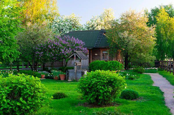 Vrt v slogu ruskega dvorca