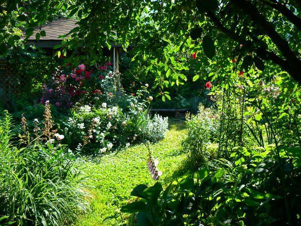 Garden spominja