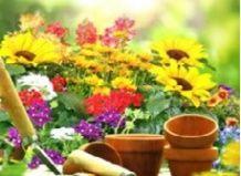 Садовая терапия