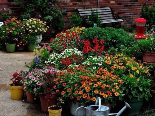 Zahradní a krajinářská architektura pro psycho