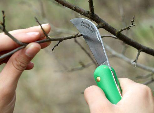 Садовые ножи для обрезки, прививки и окулировки