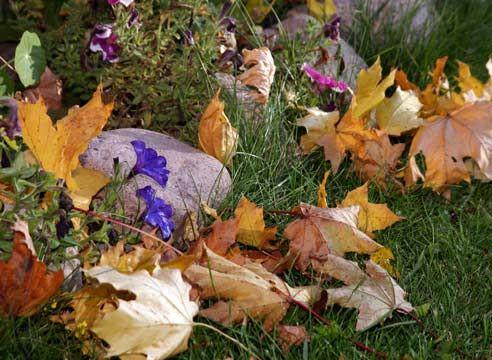 Садовый пылесос для уборки листьев