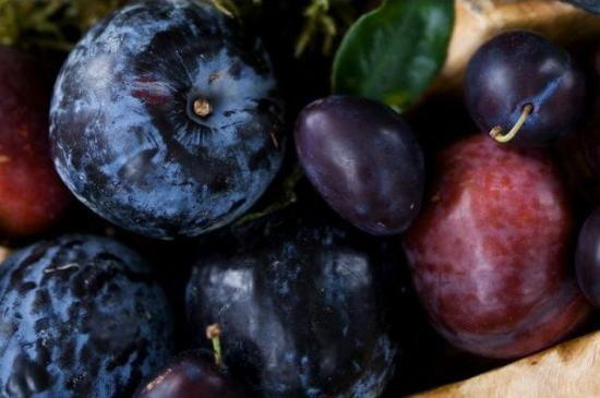 slive sadje