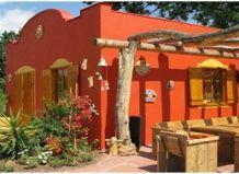 Солнечная мексика в вашем саду