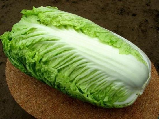 kitajsko zelje