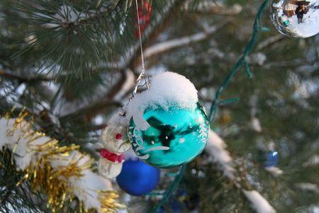 Pin, un simbol al sărbătorilor de Anul Nou