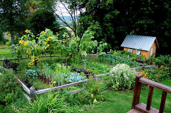 Sodobno oblikovanje vrta