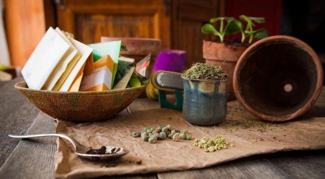 setev semen za sadike, semena
