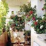 Свет для растений