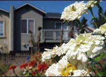 Avstralski mesto prakticiranja kolektivno vrtnarjenje