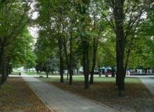 V Lugansk nameravajo rekonstruirati mestnih parkov